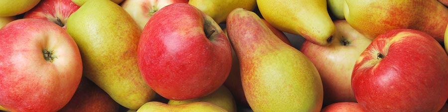 fruits-apples-pears.jpg