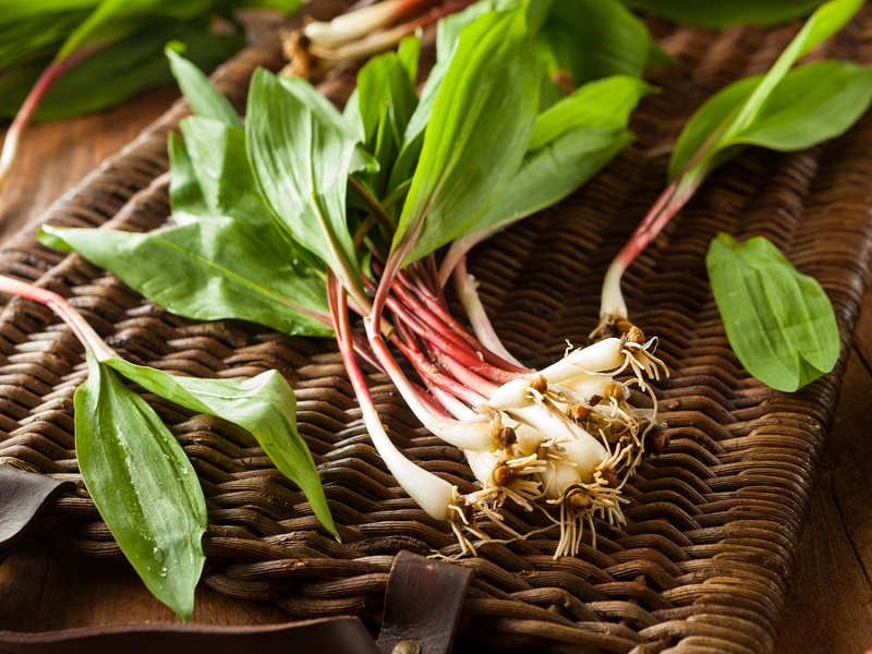 bigstock-Raw-Organic-Green-Ramps-89508065.jpg
